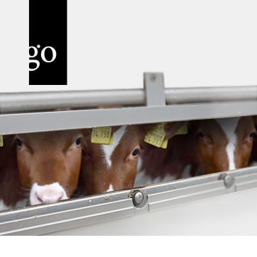 Tierschutz und Transport für Tierärzte