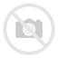 Auge in Auge mit dem Blutdruck — die hypertensive Retinopathie der Katze