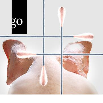 Diagnostik und Monitoring im Schweinebestand – Theorie, Fallbeispiele und Übungen