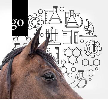Labordiagnostik: Spurensuche  beim Pferd