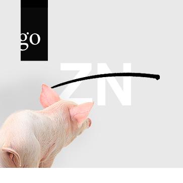 Das Schwein und das Zink