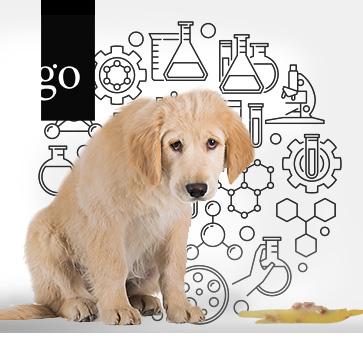 Labordiagnostik: Spurensuche beim Hund Leitsymptom Erbrechen