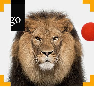 Tierschutz in Zirkus und Zoo